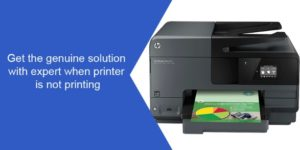the genuine solution with expert when printer is not printing