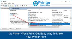 My Printer Won't Print